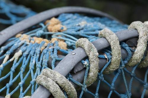 Visiter Molène - Pêche