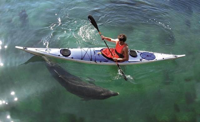 Kayak en mer île de Sein